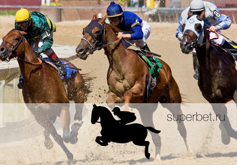 Ставки на лошадей онлайн