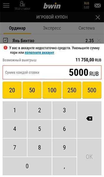 Ввод суммы ставки в БК Bwin.ru