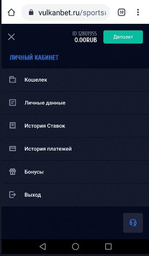 Функционал мобильной версии БК ВулканБет.